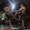 MMA_Yunquera-Henares_11-02-2017_0089 (byjmdf@gmail.com) Tags: verde canon eos c5d mk ii aficionado amateur lightroom documental foto photo photography fotografia color bn deportes artes marciales mixtas karate kickboxing boxeo muay thai judo lucha libre grecorromana jiu jitsu brasileño wushu san da sambo taekwondo hombres de honor 82 la jaula yunquera henáres guadalajara españa