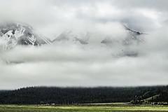 Idaho_stanely_1
