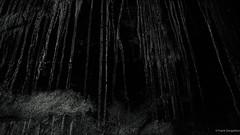 Scary (frankdorgathen) Tags: landschaftsparkduisburg duisburg ruhrgebiet ruhrpott industry industrie abstract abstrakt monochrome blackandwhite schwarzweis schwarzweiss texture textur minimalism minimalistic minimalismus minimalistisch wall wand