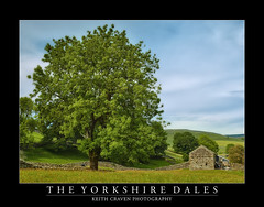 CF036138 (keithcravenphotography) Tags: yorkshire dales barns trees