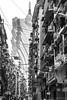 狭缝中生長 Growth in slit (kevinho86) Tags: city monochrome bw eos6d canon cityscapes architectural urban 都会 建築 100mm 城市 澳門 macau macao blackwhite