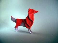 Dingo Star - Patrício Kunz (Rui.Roda) Tags: origami papiroflexia papierfalten dingo star patrício kunz