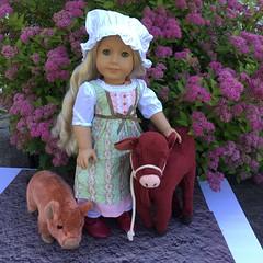 Caroline - Behind the scenes (Foxy Belle) Tags: caroline american girl ag 18 inch doll mud outside garden flowers 19th century farmer farm garnet jersey cow pig hog plush stuffed animal animals behind scenes paper foam board