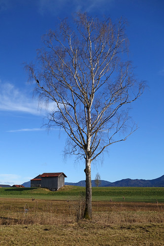 2017-12-31 Schlehdorf, Kochelsee, Kreut-Alm 007