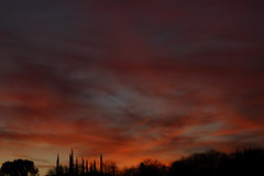 Sunset 3 20 18 #08 (Az Skies Photography) Tags: sun set sunset dusk twilight nightall sky skyline skyscape rio rico arizona az riorico rioricoaz arizonasky arizonaskyline arizonaskyscape arizonasunset red orange yellow gold golden salmon black canon eos 80d canoneos80d canon80d eos80d