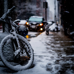 Cycling in NEW YORK in Spring (hdbrand) Tags: noctilux50mm095 objektiv exif:lens=noctiluxm109550asph camera:make=leica geocountry geo:lon=73999314888888 geo:lat=40723324 exif:isospeed=100 geostate camera:model=leicam10 geolocation geocity exif:make=leica exif:model=leicam10 exif:focallength=50mm