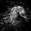 Tiny World inside a Crystal Ball (David Glen) Tags: life tinytree storm cloudy forrest woods rain mud miniature white black dark reflections crystalball outdoor tree blackandwhite