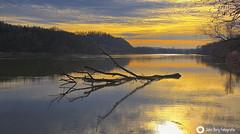 Abendstimmung am Inn (john_berg5) Tags: evening mood river sunset sun inn bayern bavaria germany sky reflection tree