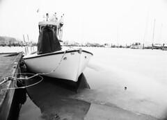 Osiris-øjne (holtelars) Tags: pentax 645 pentax645 645n 6x45 smcpentaxa 35mm f35 120 film 120film foma fomapan fomapan100 fomapan100professional 100iso mediumformat analog analogue blackandwhite classicblackwhite bw monochrome filmforever ishootfilm filmphotography xtol homeprocessing larsholte nivå havn marina denmark danmark boat