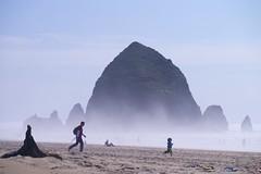 Oregon Coast (PapaFive) Tags: springbreak hwy101 oregoncoast or usa westcoastbestcoast