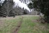 Trail shot (rozoneill) Tags: gods thumb lincoln city oregon coast hiking trail roads end state park cascade head
