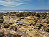 IMG_20180409_112852hdrx (joeginder) Tags: jrglongbeach oceantrails whitepoint hiking pacific california ocean beach rocky geology palosverdes sanpedro