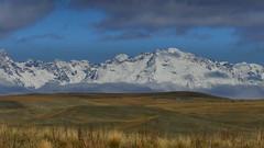 MacKenzie Country (njohn209) Tags: fz1000 panasonic landscape nz