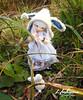Hoshizora_51 (zeroyo yasu) Tags: ltf littlefee luna bjd fairyland yosd doll jardin bois lapin fleur