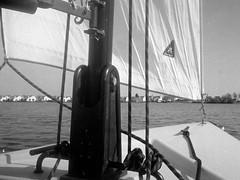 Sailing day (25/8) Tags: olympus pen ee2 ilford fp4 ilfotecddx