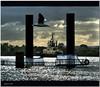 Pier and tug (agphoto100) Tags: pier fuji fujifilm boat tug seagull river steel clouds sun shine f770exr brisbane agphoto100