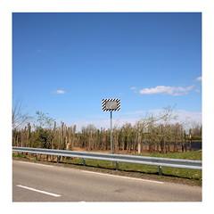 Mirror (ngbrx) Tags: euroairport saintlouis hautrhin france airport flughafen basel frankreich schweiz switzerland suisse svizzera road strase mirror spiegel bäume trees himmel sky