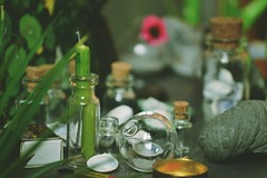 🌱 (tarengil) Tags: green glass plant rocks miniature scene diorama light bokeh detail