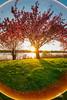 Irix Sun Circle - Natural Lens Flare (DiMiCoLoGY) Tags: paysage lake landscapes irix flare halo