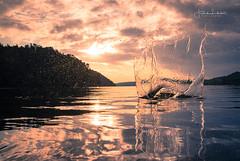 M O T I O N (Fredrik Lindedal) Tags: water splash motion lake cloudsstormssunsetssunrises clouds sunrise forest mountain skyline sweden sverige reflections reflection morning lindedal landscape