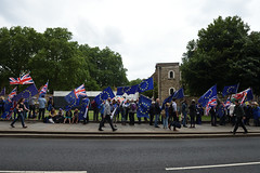 Img634660nxi_conv (veryamateurish) Tags: london westminster parliament housesofparliament abingdonstreet demonstration protest eu europeanunion brexit flags