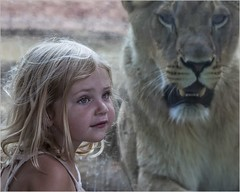 The Little Girl and the Lioness (A Anderson Photography, over 2.5 million views) Tags: lioness zoo canon blonde child