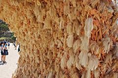 wave 2 (nisudapi) Tags: tamarama beach blonde wave wave2 thas annettethas hair doll barbie barbiedoll sxs sxs2015 sydney australia sculpture art 2015 sculpturebythesea exhibition outdoor