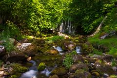 Scale Haw Falls (andythomas390) Tags: scalehawfalls hebden yorkshiredales trees river waterfall lichen rocks le nikon d7200 18200mm leelittlestopper