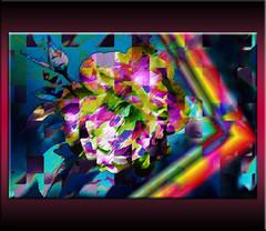 Irisada (seguicollar) Tags: imagencreativa photomanipulación art arte artecreativo artedigital virginiaseguí rosa arcoiris ángulo líneas