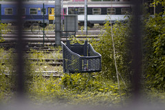 Trolley in the Wild (Yoann Gauthier) Tags: 100d france paris ivry shoppping trolley grass wild