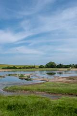 Upton Warren summer 4431 (Ruth Flickr) Tags: europe flashes midlands uptonwarren wwt worcestershirewildlifetrust worcestershireengland birds gulls reserve summer