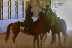 JBC_6549.jpg (Jim Babbage) Tags: krahc bethany appaloosa horses horseshow 2018