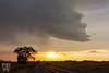 Down the Line (Nathan Jurgensen) Tags: nebraska weather storms thunderstorms severe updraft newx sun sunset stormchase chase chaser chasing travel