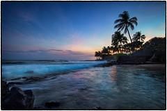 Sunset, Poipu, Kauai. (drpeterrath) Tags: canon eos5dsr 5dsr sunset nature poipu kauai hawaii koloa outdoor ocean pacific reflection waves palm trees rocks longexposure silhouette water travel seascape landscape naturallight nightphotography blue hour