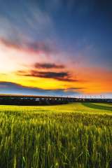 Sunset (Marc Braner) Tags: ifttt 500px rhinelandpalatinate worms germany europe outdoors sky building exterior landmark architecture cultivated land agriculture backlit farm rural bridge talbrücke pfeddersheim wormspfeddersheim wormspfiffligheim fields green sunset dusk