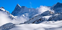 Finsteraarhorn (4274m) (sylviafurrer) Tags: montagne mountain berge winter schnee snow alpen alps berneroberland bernesealps weiss white clouds wolken landschaft landscape paysage switzerland breathtakinglandscapes