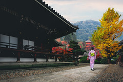 Japanese woman walking to red pagoda japan (Patrick Foto ;)) Tags: 8 asia attractive autumn background beautiful beauty city colorful concept copyspace costume culture dress female garden geisha gion girl icon japan japanese kimono kyoto lady leaf lifestyle nature old outdoor pagoda park people person portrait red street summer temple tokyo tourism tourist tradition traditional travel vintage walking wearing woman women young kyōtoshi kyōtofu jp