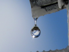 Water droplet. (wanderview) Tags: water droplet waterdroplet 7dwf anythinggoes