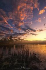 Mary Lake in Redding, CA (wesome) Tags: adamattoun marylake redding