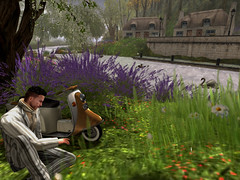 Tales of the Riverbank Remembered (ScottSilverdale) Tags: secondlife sl riverbank talesoftheriverbank river scottsilverdale thames soul2soulriver village thamesrivervalley scooter vespa riverside embankment cottage cottages waterside swan cygnets geese heron willow lavender oxeyedaisy daisy flowers wildflowers summer drive relax relaxed wildlife birds england homecounties signature signaturegianni birth catwa catwadaniel ascend argrace thatchedcottage