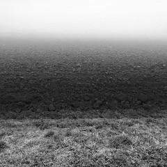 46 shades of grey (Robyn Hooz) Tags: 46 campo field gray shades sfumature layers strati soil suolo nebbia fog terra land padova
