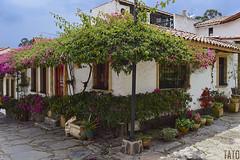 Pueblito Boyacence (Tato Avila) Tags: colombia colores cálido casas arquitectura boyacá pueblitoboyacense duitama nikon naturaleza colonial colombiamundomágico