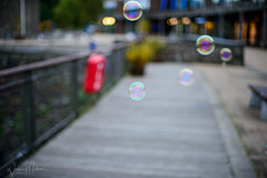 Bubbles... (w.mekwi photography [here & there]) Tags: bokeh bubbles hbw dof 50mmf14 wmekwiphotography niftyfifty lomondshores depthoffield nikond800 fence