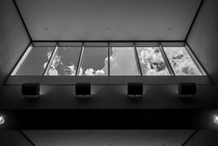 Skylight, Miami International (irrational.photography) Tags: rational irrational irrationalphoto irrationalphotography rationalphotography photography irrationalphotographyrationalphotography black white monocrhome grey old vintage contrast film grain noise bw gray scale grayscale monochrome architecture up ceiling look looking tilt light cloud glass rectangle support window sky skylight atrium symmetry building structure line indoor outdoor