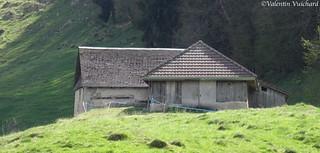 SF_DSC02660 - Switzerland, Gruyère region - Alpine pasture farm.