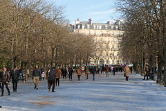 Jardin du Luxembourg - Paris (France) (Meteorry) Tags: europe france idf îledefrance paris jardinduluxembourg park parc garden jardin winter hiver snow neige people crowd sorbonne trees arbres february 2018 meteorry