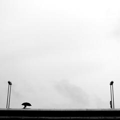 From a streetlight to the other one (pascalcolin1) Tags: paris13 homme man parapluie umbrella pont bridge réverbères lamppost streetlight photoderue streetview urbanarte noiretblanc blackandwithe photopascalcolin carré square 50mm canon50mm canon pontcharlesdegaulle ciel sky minimalist minimaliste