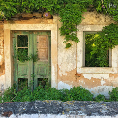 Rural Decay (Pedro Nogueira Photography) Tags: pedronogueira pedronogueiraphotography photography iphonex architecture house door window ruraldecay entrance vegetagion iphoneography