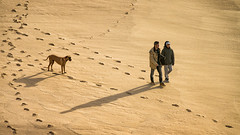 'You go your way and I'll go mine ... ' (Canadapt) Tags: man woman couple dog walk beach sand tracks shadow magoito portugal canadapt