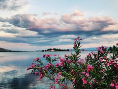 #greece #summer #beauty (ria.efstathiou) Tags: greece summer beauty